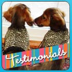 Happy customers and cute Dachshund photos